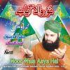 Noor Wala Aaya Hai Vol  Islamic Naats .jpg